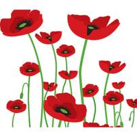 HILCO Microfibre Cleaning Cloth ~  Spring Poppies